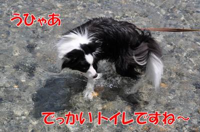 k4509_convert_2010072417090.jpg