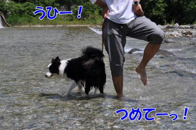k4521_convert_2010072417101.jpg