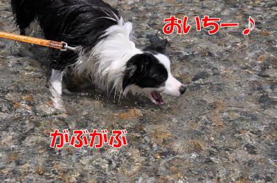 k4543_convert_2010072417105.jpg