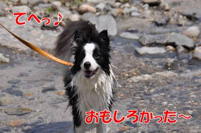 k4616_convert_2010072417134.jpg
