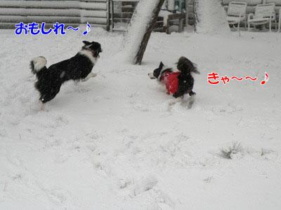 ka20110116-3.jpg