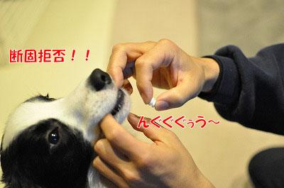 ku20110122-1.jpg