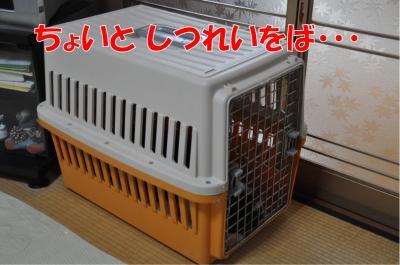 m-3891_convert_20100717174548.jpg