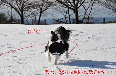 my20110109-6.jpg