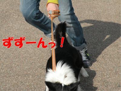 q-520_convert_20100320191358.jpg