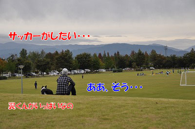 s-665.jpg