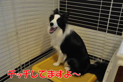 u3862_convert_2010072920414.jpg
