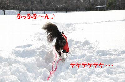 yu20110123-01.jpg