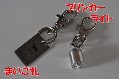 z-2981-0_convert_20100612173448.jpg