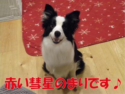 z-333_convert_20100329213938.jpg