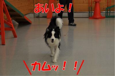 z-3662_convert_20100715232238.jpg