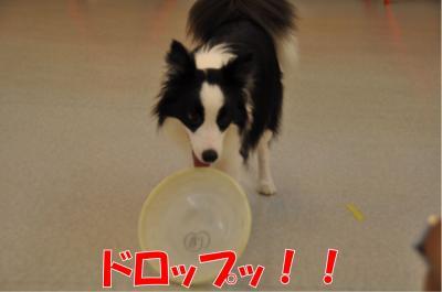 z-3835_convert_20100715232316.jpg