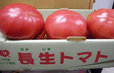 0-tomatox.jpg