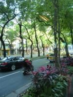 台湾旅行 街並み 定禅寺通りに似た所