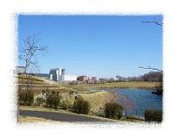 花の丘公園フリマ 公園1