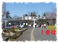 花の丘公園フリマ 受付