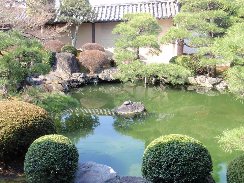 東寺・小子房庭園2