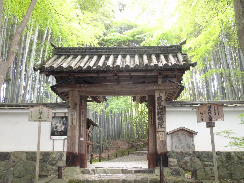 地蔵院(竹の寺)・総門