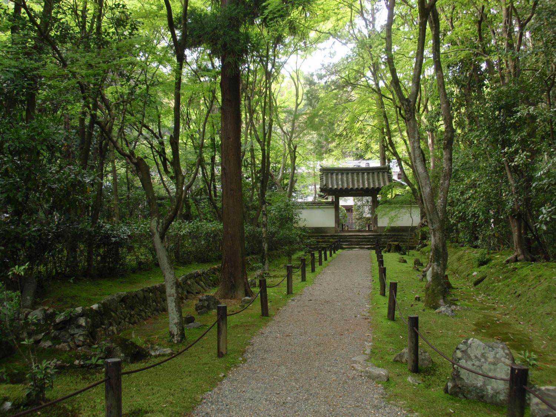 地蔵院(竹の寺)・方丈参道