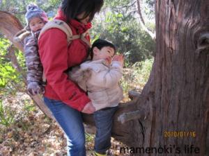 親子で木登り