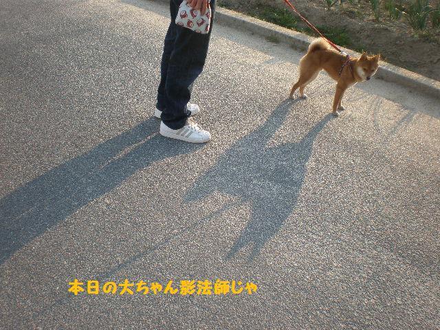 お散歩3jpg
