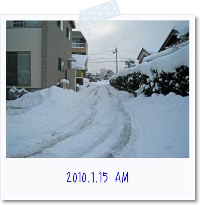 20100115-2.jpg