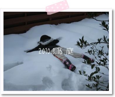 20100116-2.jpg