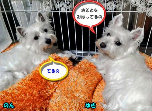 NEC_0763ーs