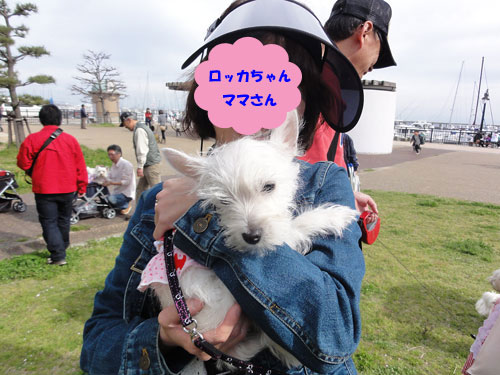 DSC06984.jpg