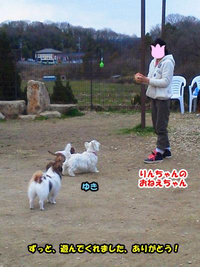 NEC_0702_20120408162747.jpg