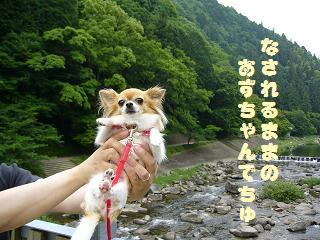 香嵐渓(あず1)