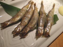 mitaka-monterosa15.jpg