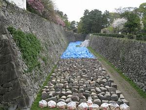 nagoyajo18.jpg