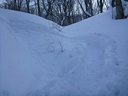 県民の森七滝氷瀑22(2013.1.30)
