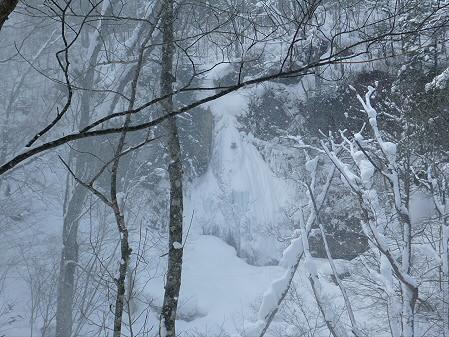 県民の森七滝氷瀑23(2013.1.30)
