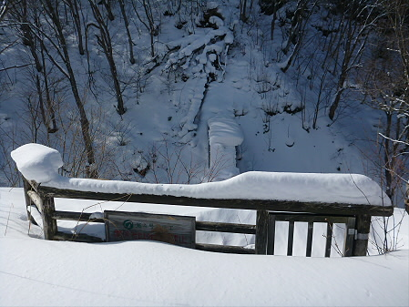 県民の森七滝氷瀑39(2013.1.30)