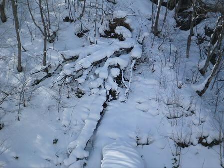 県民の森七滝氷瀑35(2013.1.30)