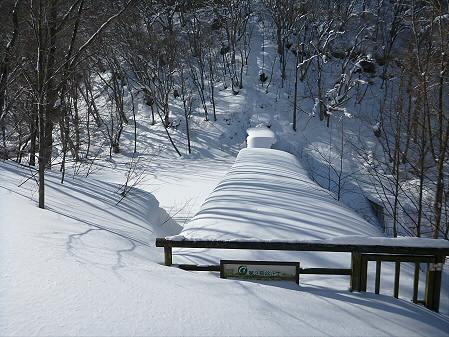 県民の森七滝氷瀑40(2013.1.30)