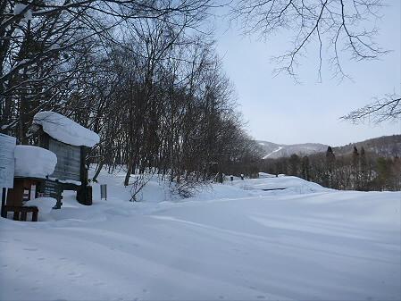 県民の森七滝氷瀑47(2013.1.30)