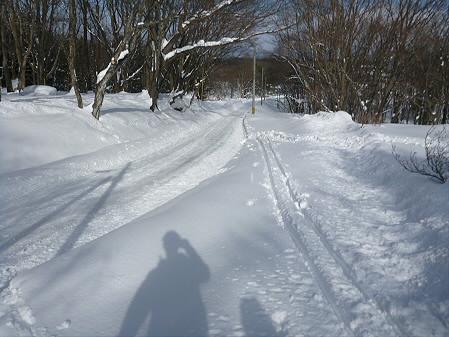 県民の森七滝氷瀑49(2013.1.30)
