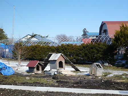 犬小屋スリー01(2013.3.15)