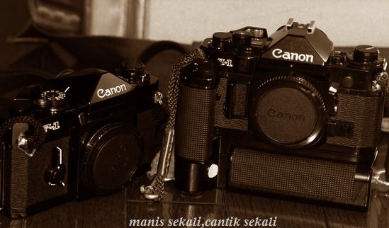cantik1_20110113233738.jpg