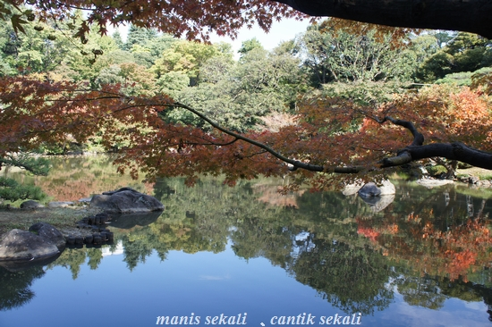 cantik2_20110113075515.jpg
