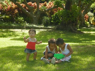 熱帯植物園で夏の時間
