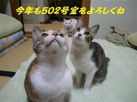 002_R-1.jpg
