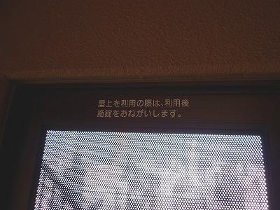P1060489.jpg