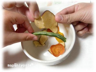 セコム 野菜 体験 口コミ レビュー