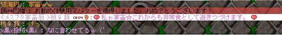 Image17_20100425211827.jpg