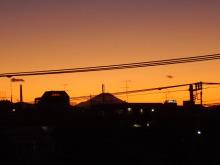 陽だまりネコ『まるまりこ』-夕焼け富士山