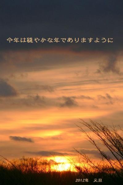 P1160008_20120101075450.jpg